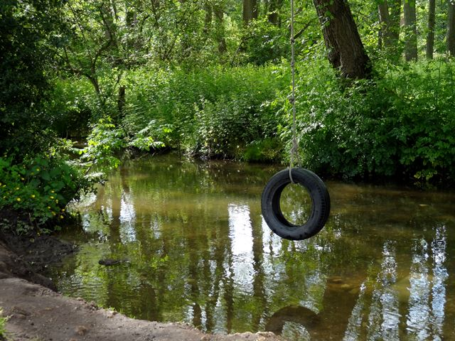 A stroll along the Tillingbourne at Shere