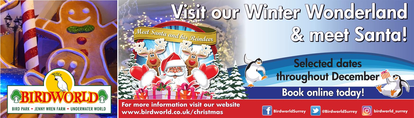 Guide To Santa Grottos In Surrey Official Tourism Website