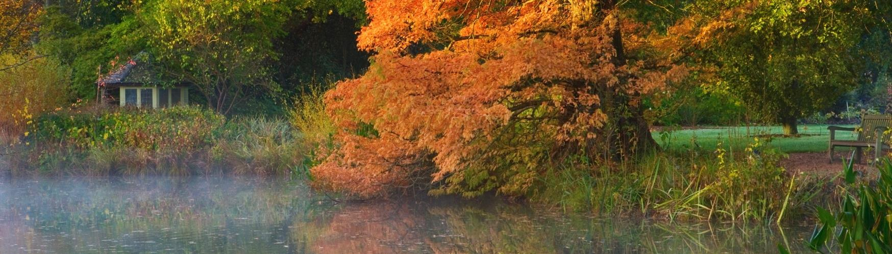 Glorious gardens to visit in Surrey - Visit Surrey