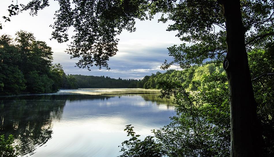 map of virginia water lake Virginia Water Lake Reservoir In Virginia Water Runnymede map of virginia water lake