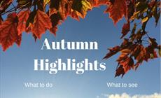 Thumbnail for Autumn Highlights