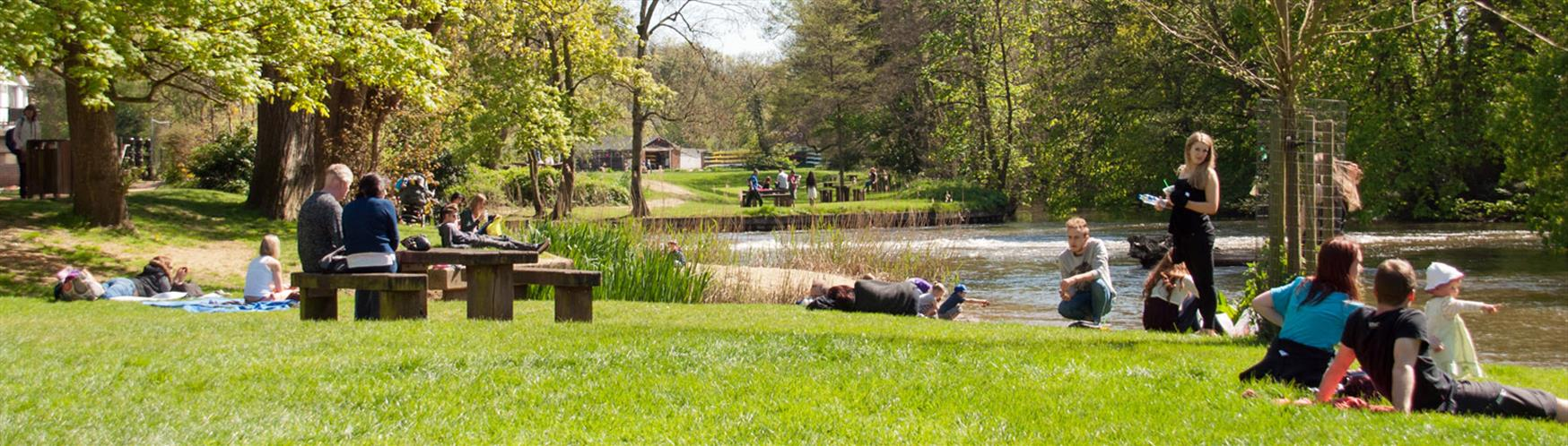 Great spot for a picnic!  River Wey, Guildford