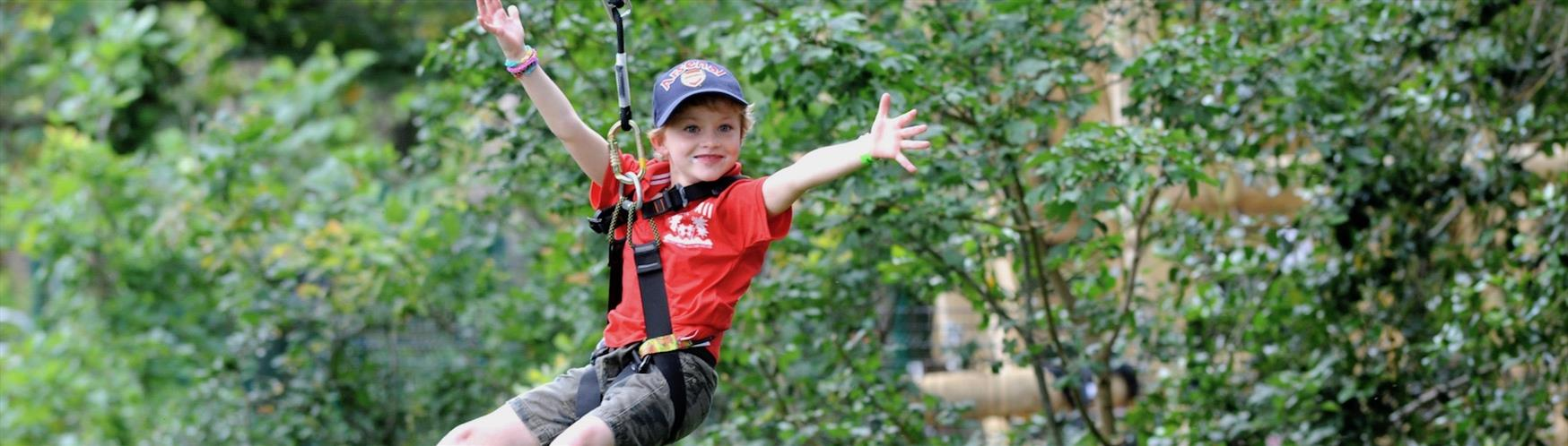 Enjoy a tree top adventure in Guildford