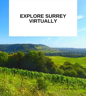 Thumbnail for Videos tours of Surrey