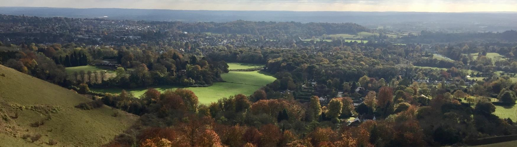 Be inspired by the view from Reigate Hill