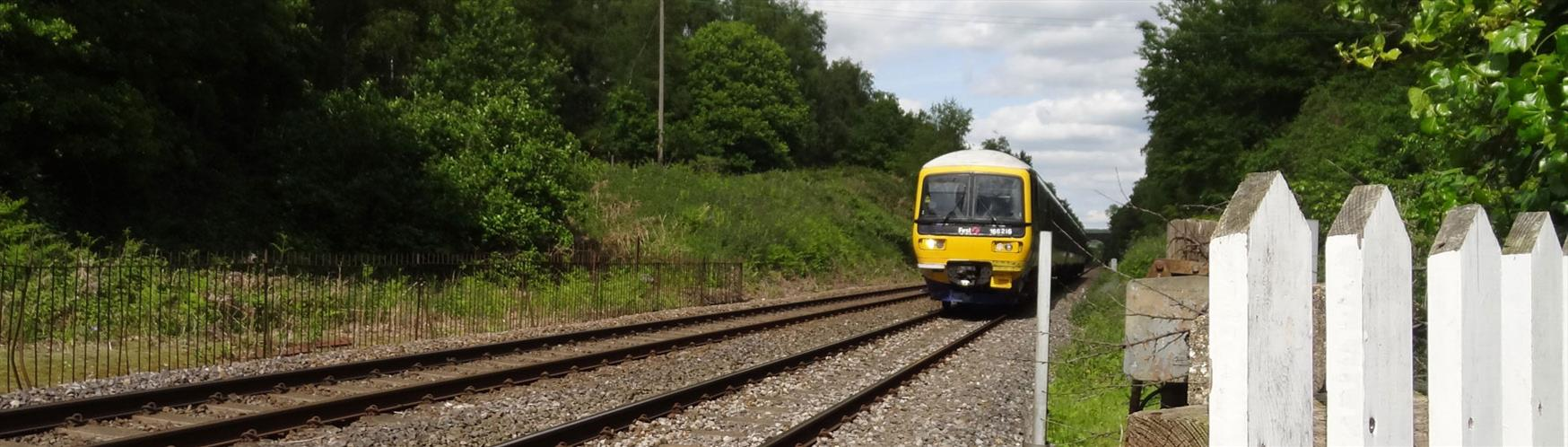 See Surrey by train, bus, car, foot and more