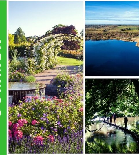 Find things to do in Surrey this Summer|