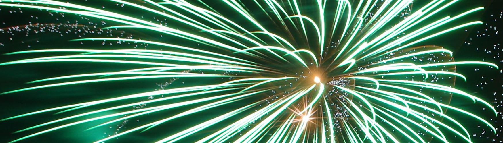 Celebrate Bonfire Night in Surrey