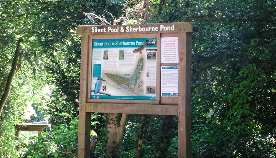 Silent Pool courtesy of Surrey Wildlife Trust