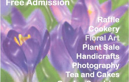 Ewell Horticultural Association's Spring Show