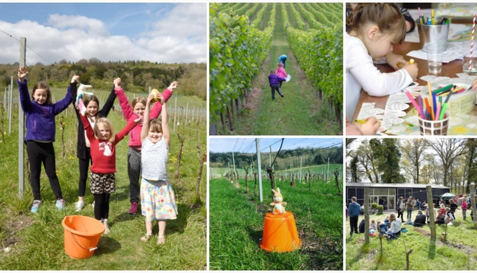 Easter Open Day at Albury Vineyard