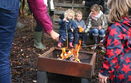 Forest Fun 2+yrs at Gatton Park