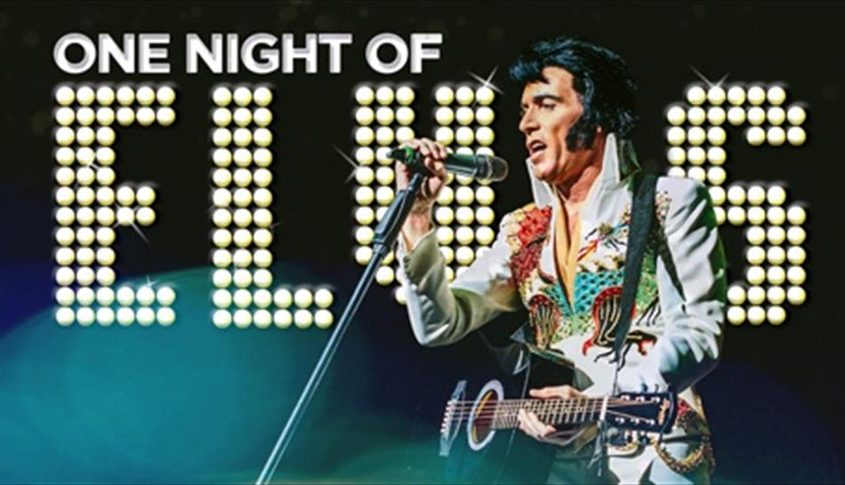 One Night of Elvis - Lee Memphis King