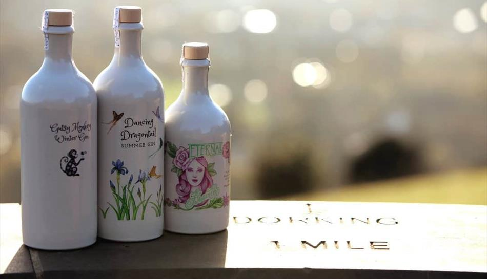 Gin and Vine Experience at Denbies Wine Estate