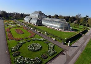 Palm house at Kew copy right Jeff Eden, RBG Kew