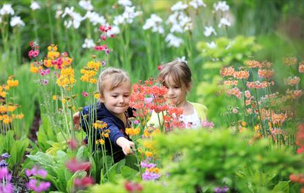 Easter Holiday Family Fun at RHS Garden Wisley