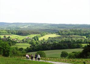 Walking Newlands Corner
