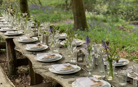 Woodland Supper