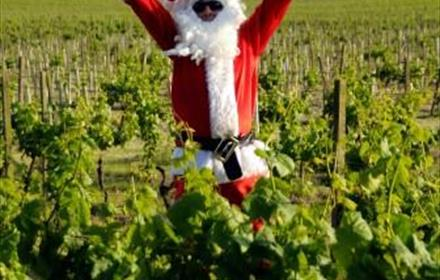 Santa at Denbies Wine Estate