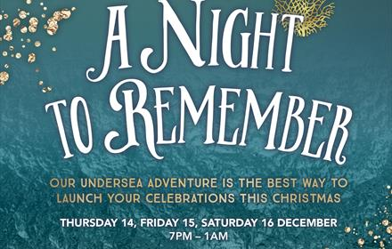 Christmas Parties - A Night to Remember